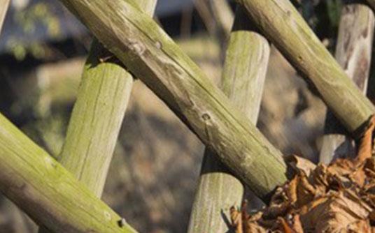 Abfallbeispiel für Holz, schadstoffbelastet